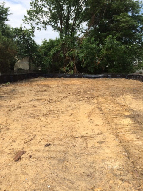 Cleared-Lot-1