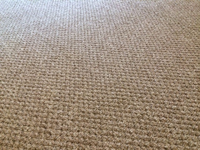 Basement-Carpet